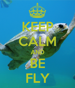 Poster: KEEP CALM AND BE FLY