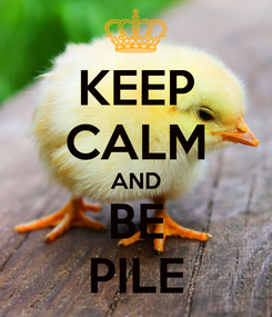 Poster: KEEP CALM AND BE PILE