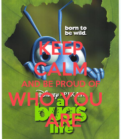 Poster: KEEP CALM AND BE PROUD OF WHO YOU    ARE