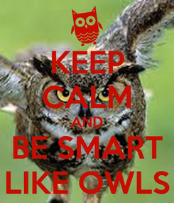 Poster: KEEP CALM AND BE SMART LIKE OWLS