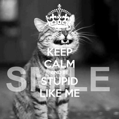 Poster: KEEP CALM AND BE STUPID LIKE ME