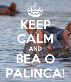 Poster: KEEP CALM AND BEA O PALINCA!