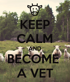 Poster: KEEP CALM AND BECOME  A VET