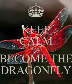 Poster: KEEP CALM AND BECOME THE DRAGONFLY