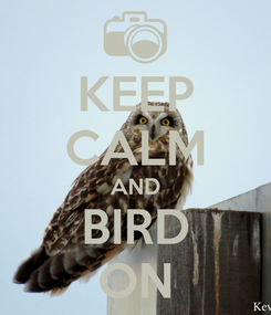 Poster: KEEP CALM AND BIRD ON