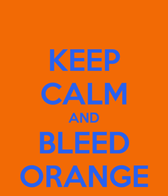 Poster: KEEP CALM AND BLEED ORANGE