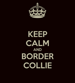 Poster: KEEP CALM AND BORDER COLLIE