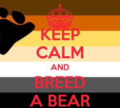 Poster: KEEP CALM AND BREED A BEAR