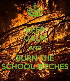 Poster: KEEP CALM AND BURN THE SCHOOL BITCHES