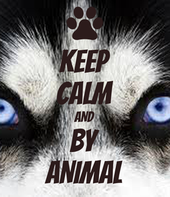 Poster: KEEP CALM AND BY ANIMAL
