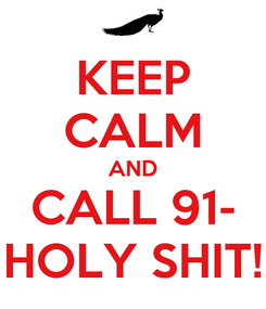 Poster: KEEP CALM AND CALL 91- HOLY SHIT!