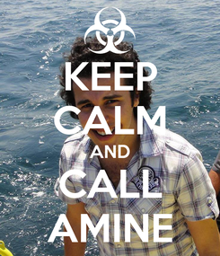 Poster: KEEP CALM AND CALL AMINE