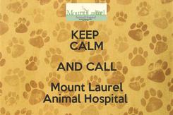 Poster: KEEP  CALM AND CALL Mount Laurel Animal Hospital