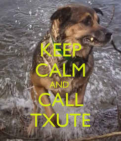 Poster: KEEP CALM AND  CALL TXUTE