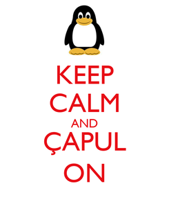 Poster: KEEP CALM AND ÇAPUL ON