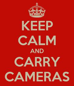Poster: KEEP CALM AND CARRY CAMERAS