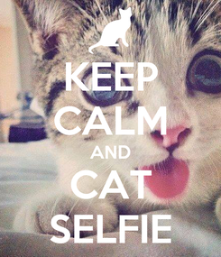 Poster: KEEP CALM AND CAT SELFIE