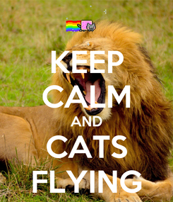Poster: KEEP CALM AND CATS FLYING