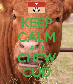 Poster: KEEP CALM AND CHEW CUD
