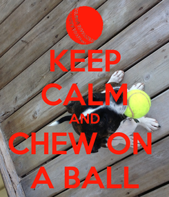 Poster: KEEP CALM AND CHEW ON  A BALL