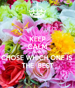 Poster: KEEP CALM AND CHOSE WHICH ONE IS  THE  BEST
