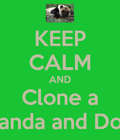 Poster: KEEP CALM AND Clone a Panda and Dog