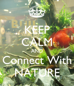 Poster: KEEP CALM AND Connect With NATURE