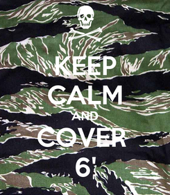 Poster: KEEP CALM AND COVER  6'