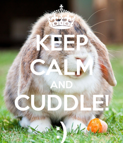 Poster: KEEP CALM AND CUDDLE! :)
