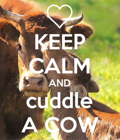 Poster: KEEP CALM AND cuddle A COW