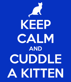 Poster: KEEP CALM AND CUDDLE A KITTEN