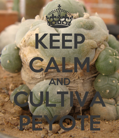 Poster: KEEP CALM AND CULTIVA PEYOTE