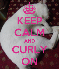 Poster: KEEP CALM AND CURLY ON