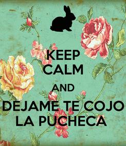 Poster: KEEP CALM AND DEJAME TE COJO LA PUCHECA