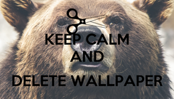 Poster: KEEP CALM AND  DELETE WALLPAPER
