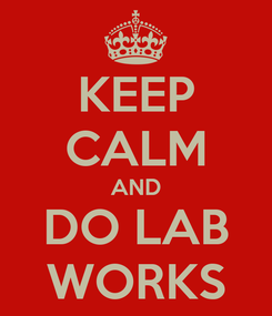 Poster: KEEP CALM AND DO LAB WORKS