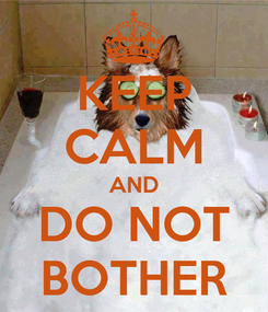 Poster: KEEP CALM AND DO NOT BOTHER