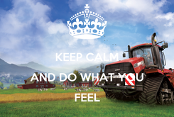 Poster:  KEEP CALM AND DO WHAT YOU FEEL