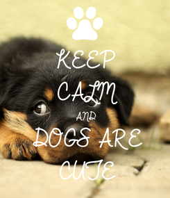 Poster: KEEP CALM AND DOGS ARE CUTE