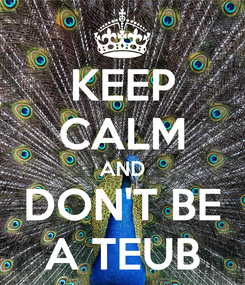 Poster: KEEP CALM AND DON'T BE A TEUB