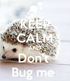 Poster: KEEP CALM AND Don't  Bug me