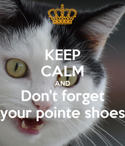 Poster: KEEP CALM AND Don't forget your pointe shoes