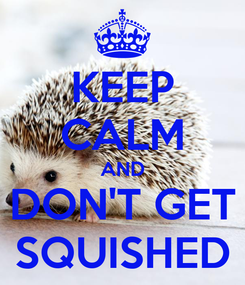 Poster: KEEP CALM AND DON'T GET SQUISHED
