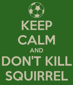 Poster: KEEP CALM AND DON'T KILL SQUIRREL