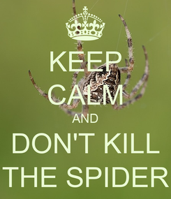 Poster: KEEP CALM AND DON'T KILL THE SPIDER