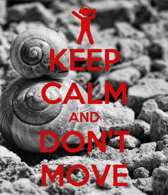 Poster: KEEP CALM AND DON'T MOVE