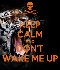 Poster: KEEP CALM AND DON'T WAKE ME UP