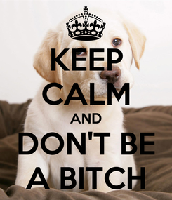 Poster: KEEP CALM AND DON'T BE A BITCH