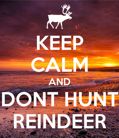 Poster: KEEP CALM AND DONT HUNT REINDEER
