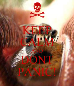 Poster: KEEP CALM AND DONT PANIC!